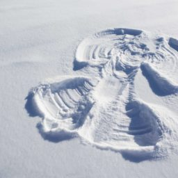 The Miracle of Snow Angels